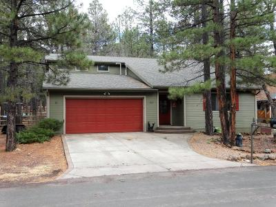 Pinetop Single Family Home For Sale: 3467 Turkey Track Road