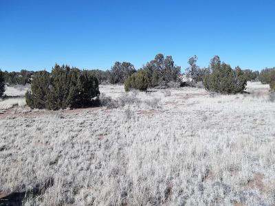 Snowflake Residential Lots & Land For Sale: 3714 Clark Road