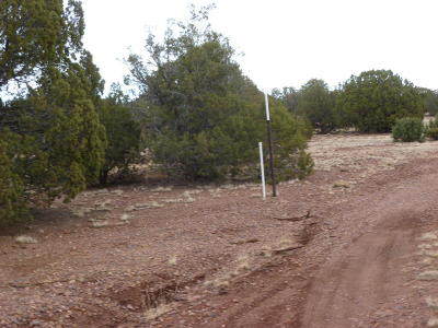 Show Low Residential Lots & Land For Sale: 9380 Lazy O Lane