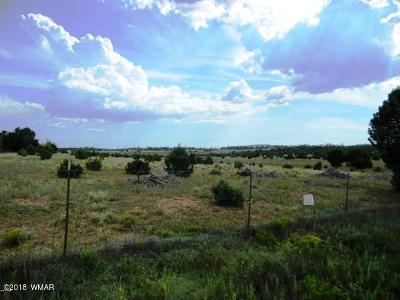 Navajo County Residential Lots & Land For Sale: 4869 Sawmill