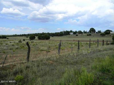 Navajo County Residential Lots & Land For Sale: 4942 Sawmill Road