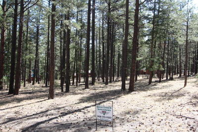 Greer Residential Lots & Land For Sale: 15 Acr 1012