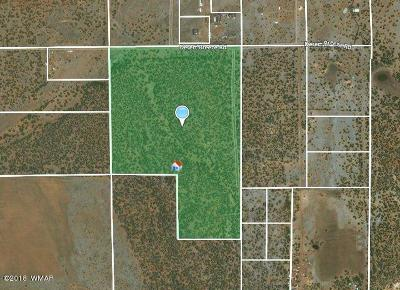 Clay Springs Residential Lots & Land For Sale: 72 Acres Tbd Desert Breeze Rd.
