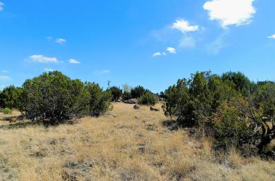 White Mountain Lake Residential Lots & Land For Sale: 8420 Ortega Drive