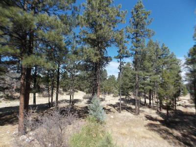 Overgaard AZ Residential Lots & Land For Sale: $71,900