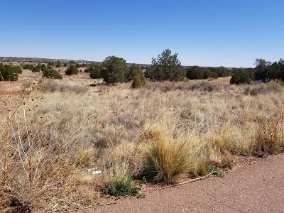Snowflake Residential Lots & Land For Sale: Tbd Ridgeview Drive