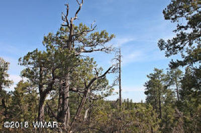 Pinetop Residential Lots & Land For Sale: 5072 Sunrise Court