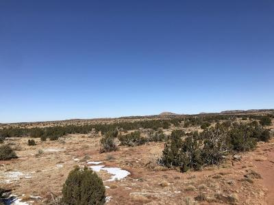 Snowflake Residential Lots & Land For Sale: 2954 Retirement Road
