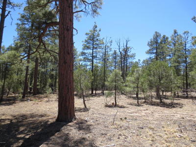 Overgaard AZ Residential Lots & Land For Sale: $225,000