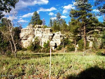 Heber AZ Residential Lots & Land For Sale: $434,500