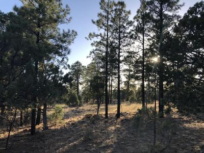Overgaard AZ Residential Lots & Land For Sale: $48,500