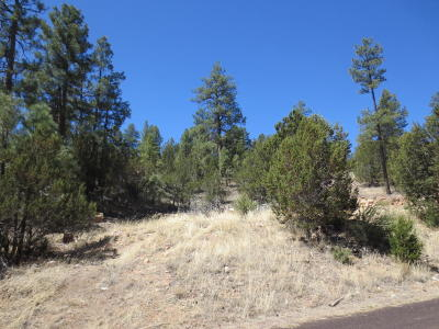 Overgaard AZ Residential Lots & Land For Sale: $23,750
