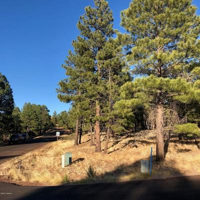 Overgaard Residential Lots & Land For Sale: 2781 Skyhawk Drive