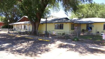 Snowflake Single Family Home For Sale: 48 E 1st Street
