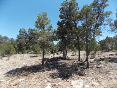 Overgaard AZ Residential Lots & Land For Sale: $34,900