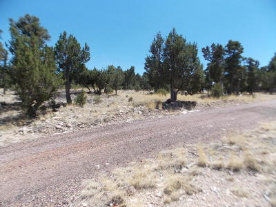 Residential Lots & Land For Sale: 3370 Whisper Lane