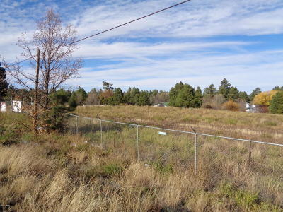 Lakeside Residential Lots & Land For Sale: 3250 White Mountain Boulevard