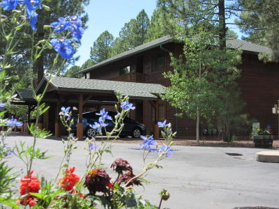 Pinetop Condo/Townhouse For Sale: 2516 Village Court #2