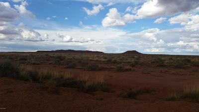 Navajo County Residential Lots & Land For Sale: Parcels 5, 5a Old Ranch Road
