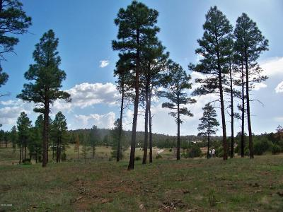 Clay Springs Residential Lots & Land For Sale: 208-15-015 B Ricochet Ranch Road