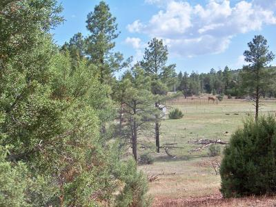 Clay Springs Residential Lots & Land For Sale: 1941 Ricochet Ranch Road