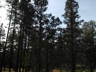 Lakeside Residential Lots & Land For Sale: 4 Acres Porter Mountain & Sponseller Road