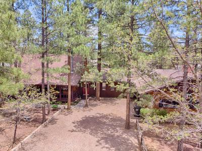 Navajo County Single Family Home For Sale: 3343 Blacksmith Trail