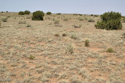 Navajo County Residential Lots & Land For Sale: Parcel 5 Off Clyde Rd