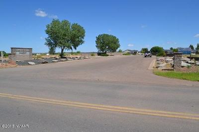 Snowflake Residential Lots & Land For Sale: Lot 998 E Sundance Springs/Concho Highwa Highway