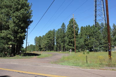 Pinetop Residential Lots & Land Pending - Take Backup: 4620 Sky Hi Road