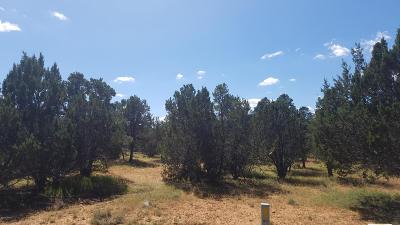 Overgaard AZ Residential Lots & Land For Sale: $47,500
