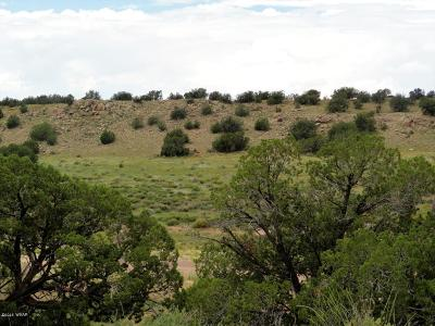 Residential Lots & Land For Sale: Lot 107 Chevelon Canyon Ranch