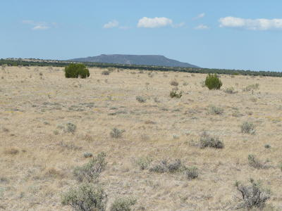 Heber Residential Lots & Land For Sale: Ccr Unit 6 Lot 771 #6