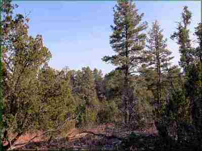 Heber Residential Lots & Land For Sale: 1948 Green Valley