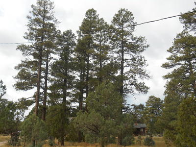 Overgaard AZ Residential Lots & Land For Sale: $399,900