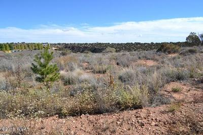 Snowflake Residential Lots & Land For Sale: 4457 Silver Hawk Trail