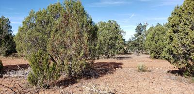 Overgaard AZ Residential Lots & Land For Sale: $58,000