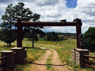Show Low Residential Lots & Land For Sale: Tbd Oak Grove