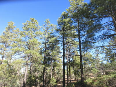 Show Low Residential Lots & Land For Sale: 2025 S Pleasantview