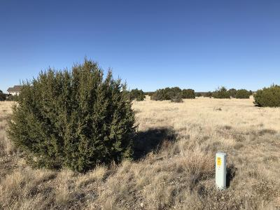 Navajo County Residential Lots & Land For Sale: 8428 Lake View Drive