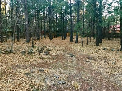 Pinetop Residential Lots & Land For Sale: 3934 Snow Circle