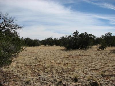 Residential Lots & Land For Sale: Lot 362 Chevelon Canyon Ranch #3