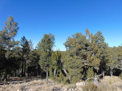 Heber Residential Lots & Land For Sale: 1740 Canyon Place