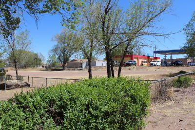 Snowflake Residential Lots & Land For Sale: 343 & 355 S Main Street