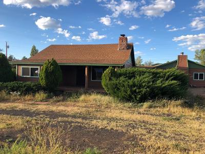 Lakeside Single Family Home For Sale: 4670 Lake Lane