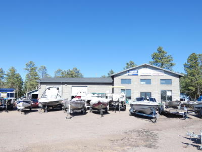 Lakeside Commercial For Sale: 3600 W White Mountain Boulevard