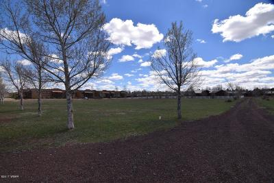 Overgaard AZ Residential Lots & Land For Sale: $40,000