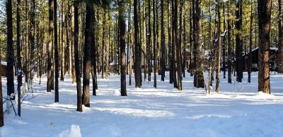 Pinetop Residential Lots & Land For Sale: 8544 Alchesay Drive