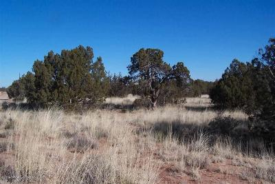 Snowflake Residential Lots & Land For Sale: 4039 E Pinto Road