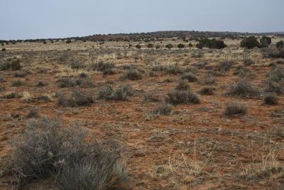 Snowflake Residential Lots & Land For Sale: 597 Hopi Lane